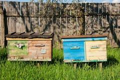 Bijenkorven op de fruittuin in de Oekraïne Royalty-vrije Stock Foto