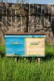 Bijenkorven op de fruittuin in de Oekraïne Stock Afbeelding