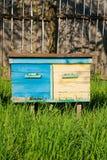 Bijenkorven op de fruittuin in de Oekraïne Stock Foto