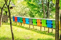 Bijenkorven op een rij Stock Afbeeldingen