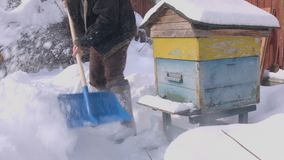 Bijenkorven in Sneeuw worden opgesloten die stock video