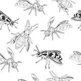 Bijenpatroon Vector wesp Royalty-vrije Stock Afbeeldingen