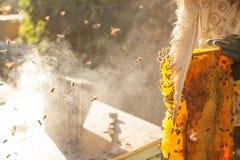 Bijenroker die in imkerij roken die van bijenstal copyspace de seizoengebonden honingbijen organische productie bewerken die conc Royalty-vrije Stock Foto