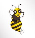 Bijenvector Stock Foto's