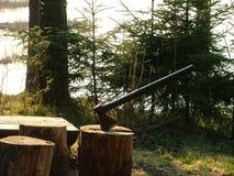 Bijl die in boomstomp wordt vastgeklemd Stock Foto's