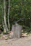 Bijl die in een boomstomp wordt geplakt Stock Afbeeldingen