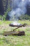 Bijl in Logboek en Vuur Stock Fotografie