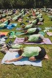 Bijna 2000 mensen nemen een vrije collectieve yogaklasse in een stadspark in Milaan, Italië Royalty-vrije Stock Afbeeldingen