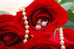 Bijou de perle réglé dans les roses rouges Image stock