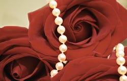 Bijou de perle réglé dans les roses rouges. Rétro. Images libres de droits