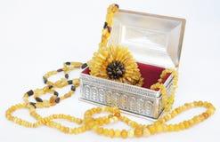 Bijou et cadre ambres de siver Image stock