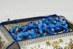 Bijou klejnoty w jewellery pude?ku Sistani zdjęcie royalty free