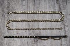 bijouterie的构成,以蛇的形式金链子和与金黄插入物的黑皮带 库存图片