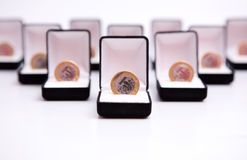 bijoux de pièce de monnaie de cadres Photo stock