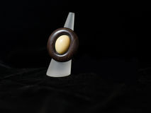Bijoux ethniques bruns de bijoux d'anneau Images libres de droits