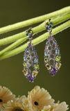Bijoux lumineux avec les éléments floraux Photos libres de droits