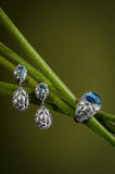 Bijoux lumineux avec les éléments floraux Photos stock