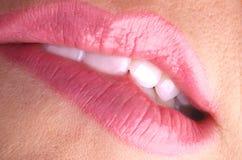 Bijt uw roze lippen Royalty-vrije Stock Foto's