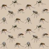Bijtende muggen Stock Fotografie