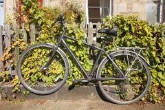 bike старый Стоковые Изображения RF