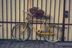 bike старый Стоковая Фотография