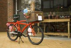 bike счастливый Стоковые Фото