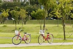 Bike Stock Images