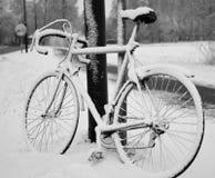 bike Стоковая Фотография