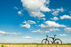 bike Стоковые Фотографии RF