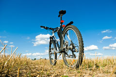 Bike Royalty Free Stock Image