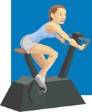 Bike. Woman on exercise bike vector illustration