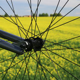 Bike Stock Images