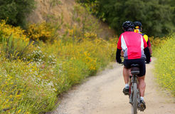 Bike. Men on mountain bikes Stock Photography