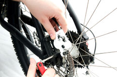 Bike. Adjustment of a hidraulic rear bike brake Royalty Free Stock Photos