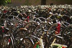 Bike Amsterdam Royalty Free Stock Photo