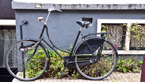 Bike in Amsterdam, Netherlands Stock Photos