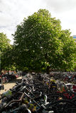 Bike Amsterdam Stock Photography