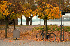 Bike in the autumn park, Cologne/ Koeln Stock Photography