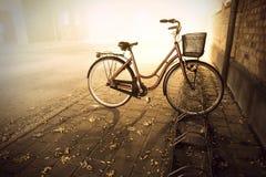 Bike in autumn Stock Photos