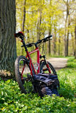 Bike and Backpack against the background of nature Stock Photos