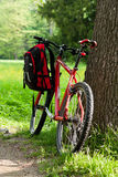 Bike and backpack among the green of nature Stock Photography