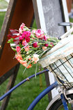Bike Basket with Flowers Stock Photography