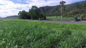A bike being chased by a drone. A shot of a biker on a country highway. Some cars are seen parking beside the highway stock video