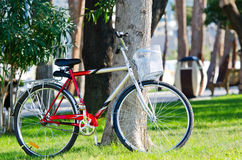 Bike bicycle in the park Stock Images