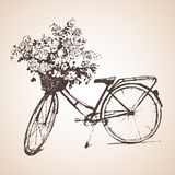 Bike with big bunch of flowers. Sketch. vector illustration