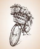 Bike with big bunch of flowers. Sketch. stock illustration