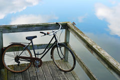Bike and bird Royalty Free Stock Images