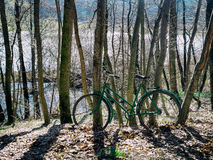 Bike captured in forest Royalty Free Stock Image