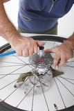 Bike care. Cyclist/biker taking care of his bike Royalty Free Stock Images