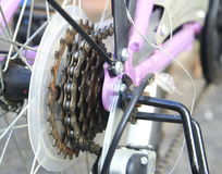 Bike cassette on the wheel Stock Photo
